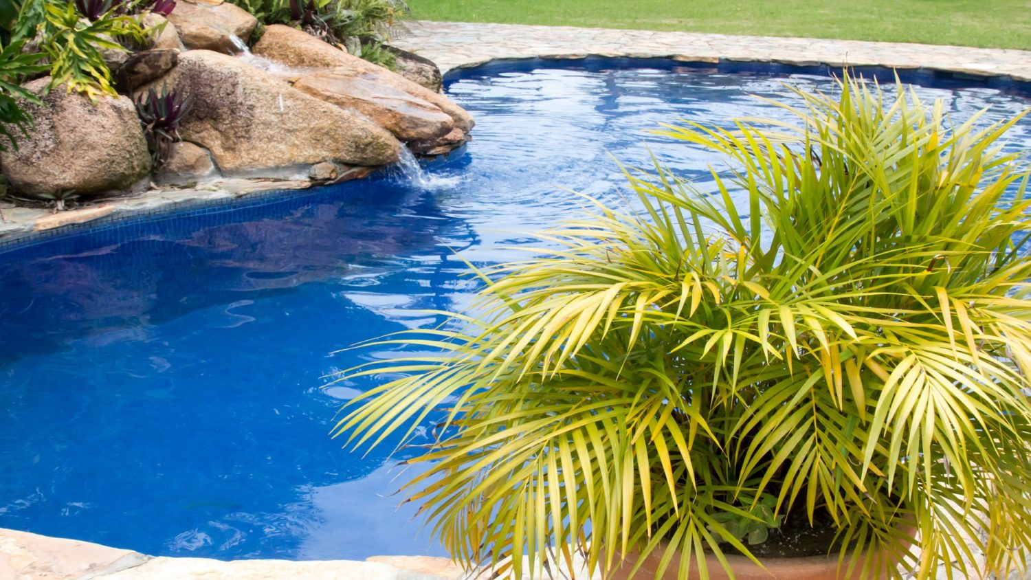 Make Use Of Potted Plants In Pool Landscaping Fronheiser Pools